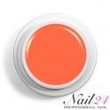 Acryl Farb Pulver Orange 307