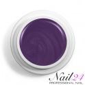 Purple 504