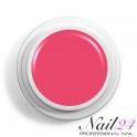 Neon Pink 521